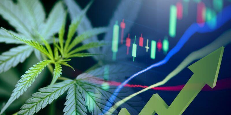 Top 4 Marijuana Stocks